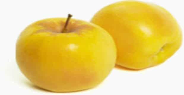 Opal Apples Are First U.S. Variety To Receive Non-GMO Label