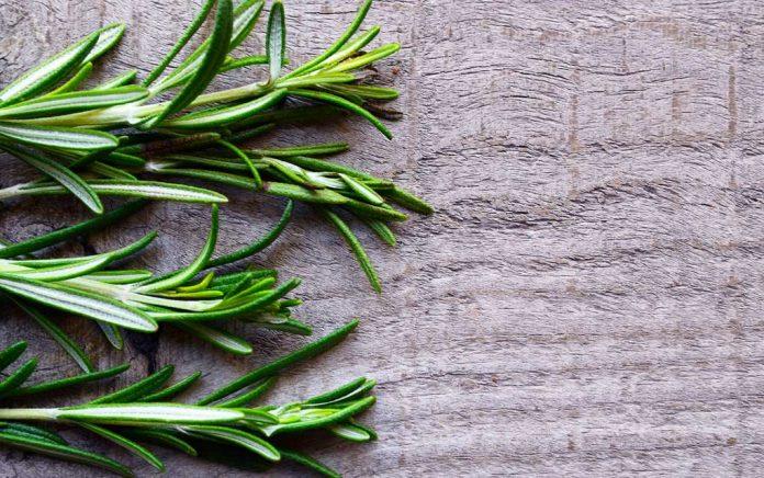 Rosemary Roasted Veggies 3 Ways