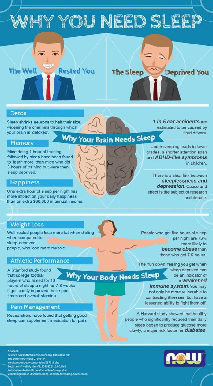 [Infographic] Why You Need Sleep