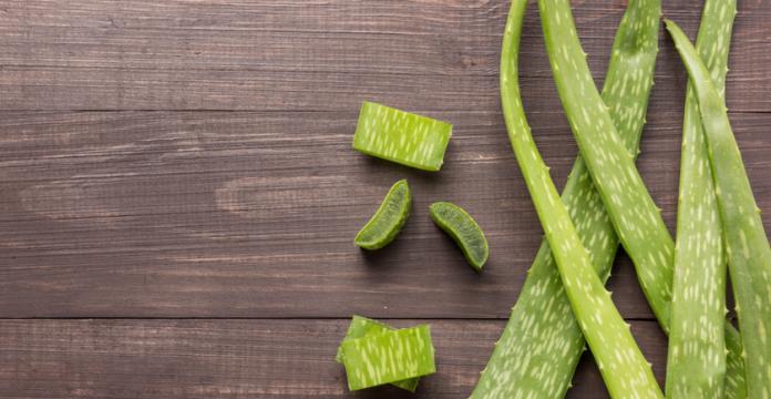 7 Ways to Use Aloe to Improve Your Health
