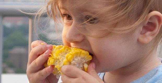 Retracted Seralini Study On GMO Corn Republished