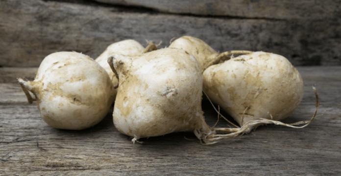 Jicama, A Veggie You Should Know Better + Recipes