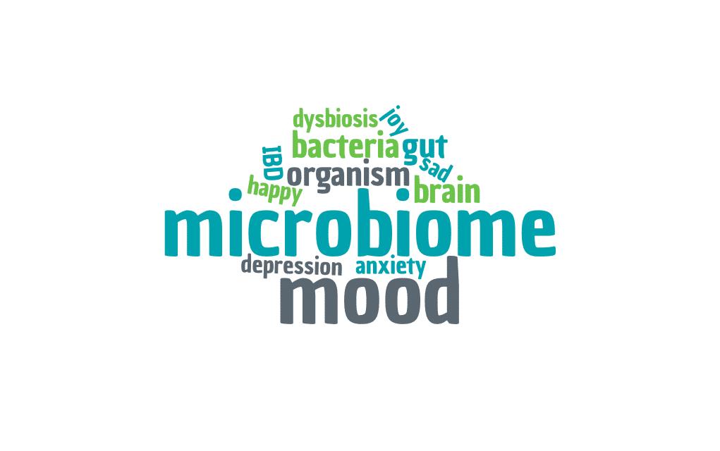 Mood Microbiome