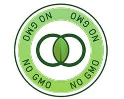 Genetically Modified Organisms: An Update