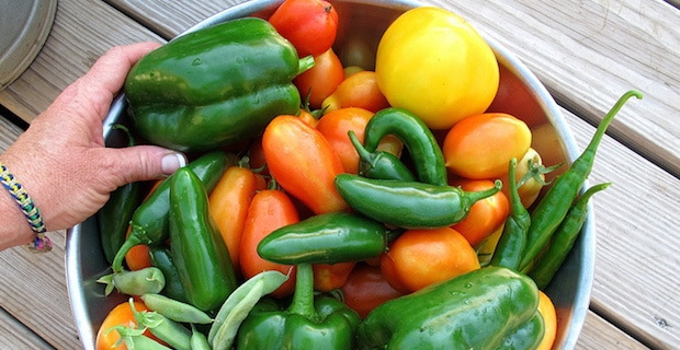 4 Reasons Eating Healthy, Seasonal Food is Better for You and the Planet