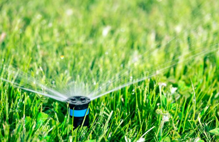 5 Tips for Water-Saving Lawn Maintenance