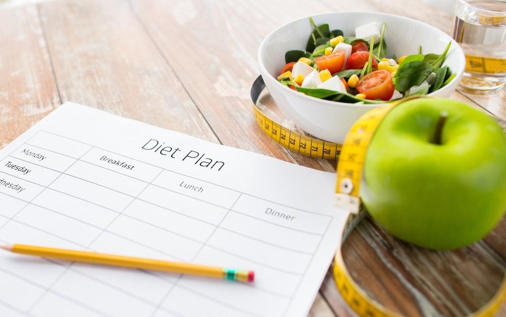 Diet plan diary
