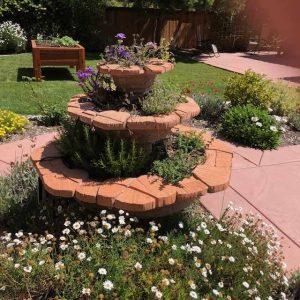 Alan Arkin's Garden