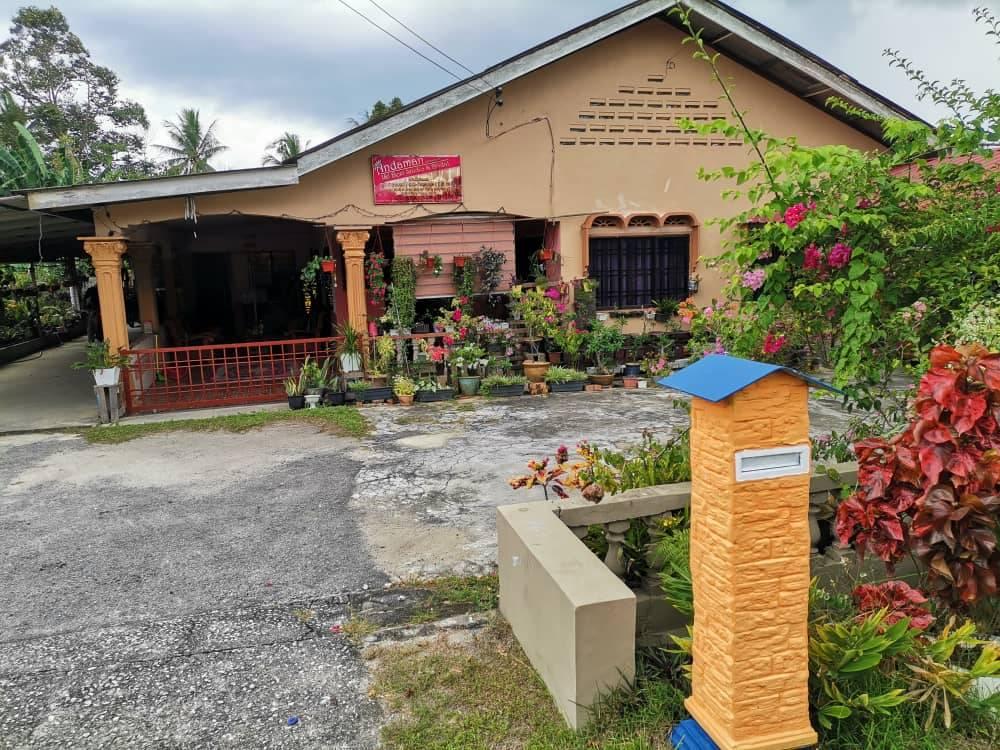 Malaysian palm fruit oil farm